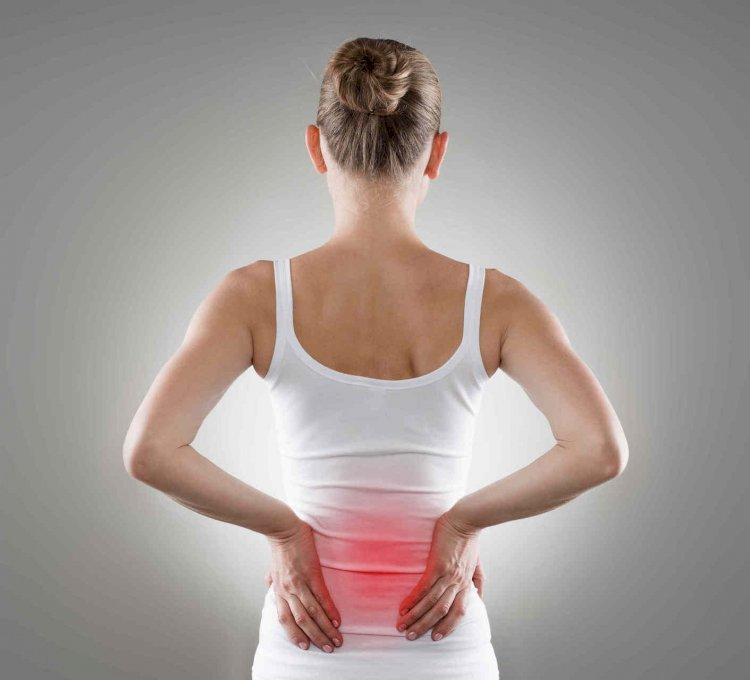 Looking For A Chiropractor In Elwood? Learn How An Expert Can Help You With Your Lower Back Pain