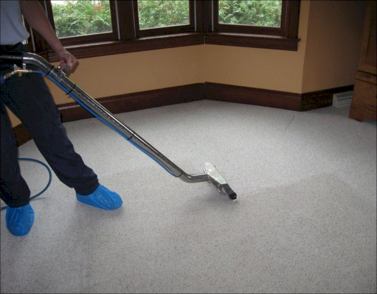 Rug Cleaning 101: Tips for Removing Some of the Worst Carpet Stains
