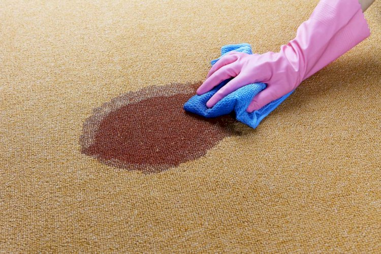 SUCCESSFUL CARPET CLEANING FOR STAIN REMOVAL