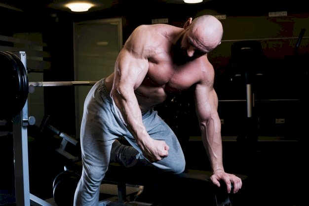 Top 5 Exercise for Abs can do it in GYM
