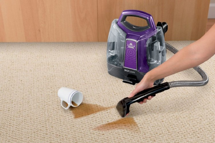 How to Remove Pet Stains From Carpet?